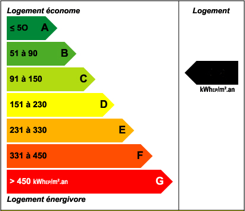 Etiquette Verte Diagnostic performance energetique